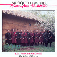 Постер трека Georgian Voices - Meurme